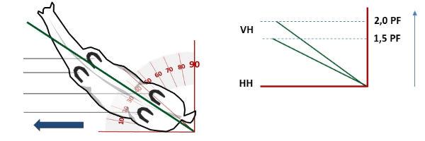 Die Grammatik des Reitens - Schulterherein - Abstellwinkel