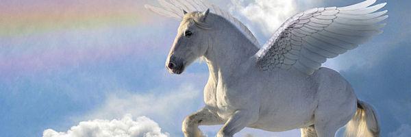 Die Grammatik des Reitens - Die Mystifizierung des Pferdes